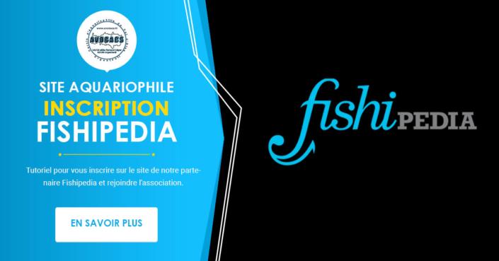 Partenaire : Encyclopédie Aquariophile - Fishipedia