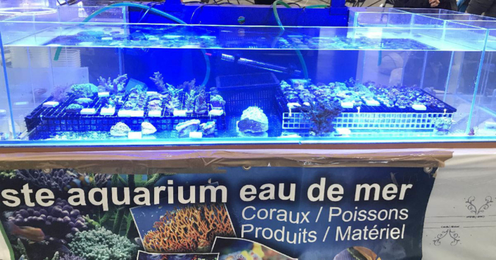 Installation exposants - Bourse Aquariophile - 23 Mars 2019