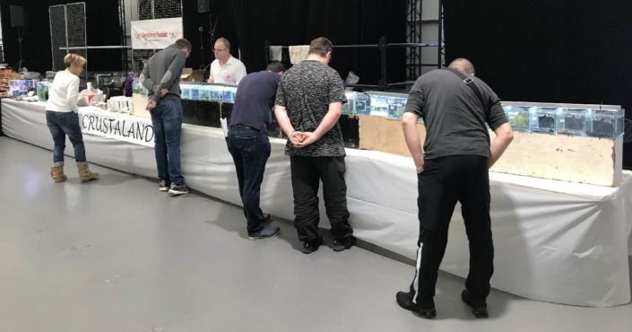Installation exposants - Bourse Aquariophile - 23 Mars 2019
