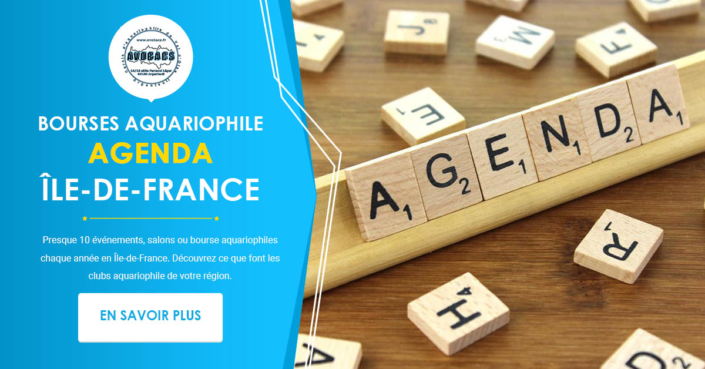 Agenda des Bourses Aquariophiles en Ile-de-France
