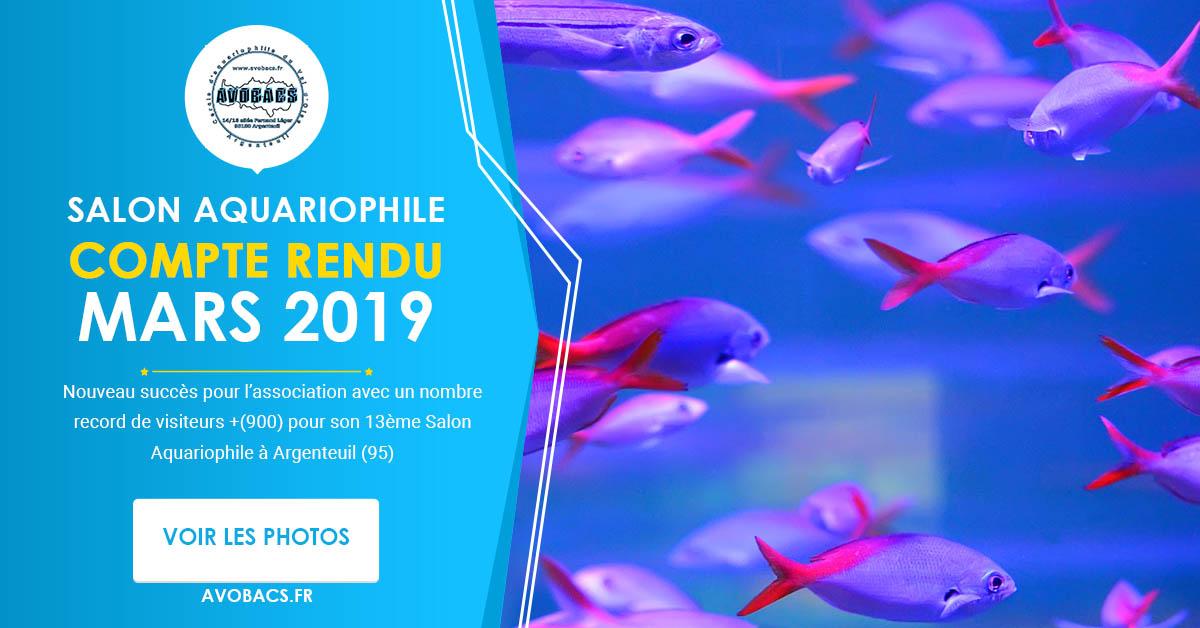 Compte Rendu bourse aquariophile Avobacs
