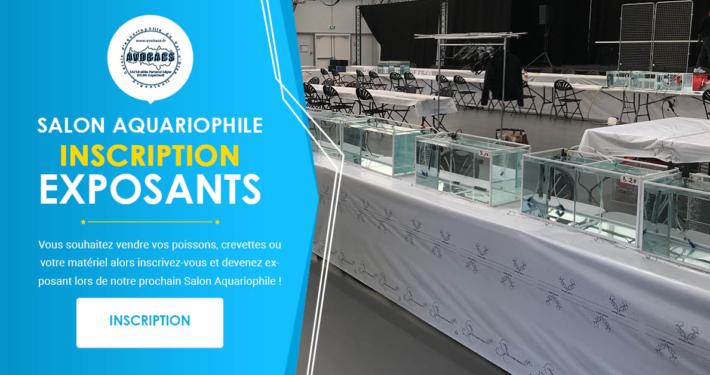 Inscription Exposant - Bourse Aquariophile Avobacs