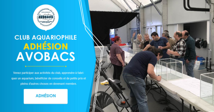 Adhésion Club Aquariophile Avobacs
