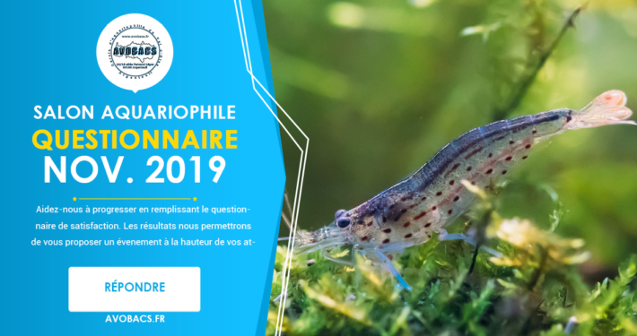 Questionnaire satisfaction - Salon Aquariophile AVOBACS Novembre 2019